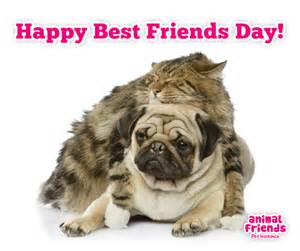 best-friends-day-1010267